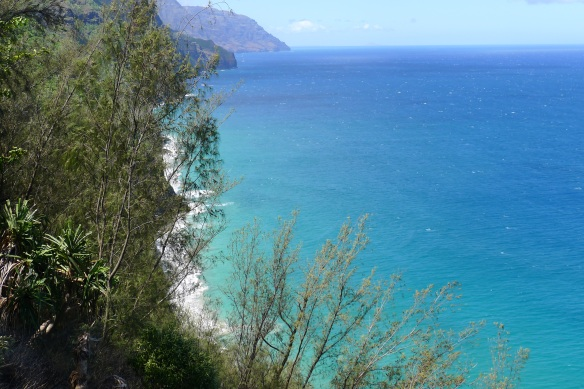 View from mile 1. In the background, that very last point jutting out, is Kalalau beach.