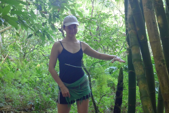 These humongous asparagus-lookalikes are new bamboo shoots. Bamboo groves punctuated the trail from the beach to the waterfall, and underneath their moaning emerald canopy, it seemed like time stood still. We found a few other interesting things in the bamboo groves...