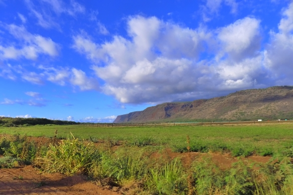 Driving past fields of red dirt, green hills and round, heavy clouds on Kauai's West shore