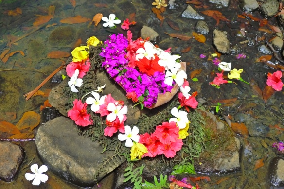 """A shrine of flowers right next to the """"Secret Falls,"""" where kings and queens of Hawai'i came to bathe. Theirs being a very segregated society, commoners didn't rub shoulders with the hoi poloi and didn't have access to this upper section of teh Wailua river."""