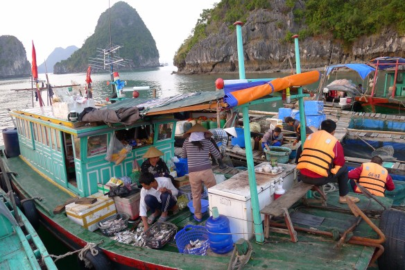 Often 3 generations in a single boat, the floating villagers seem to enjoy their lives amongst the karst islands notwithstanding the dangers of the sea and lack of access to schools for their children