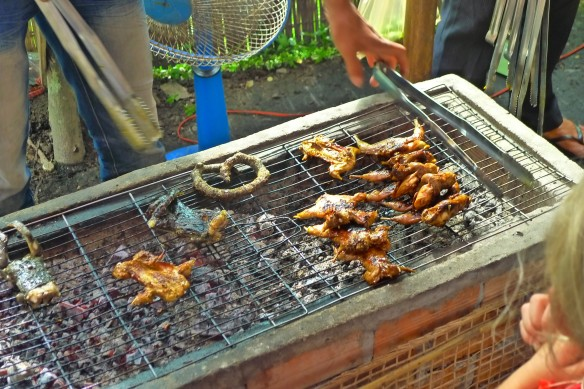 Local cuisine in a nutshell (from right to left):  chicken,  rats, snake (the sausage-like thing), frog. Out of sight: bog snails fried in butter. Bon Appetit!