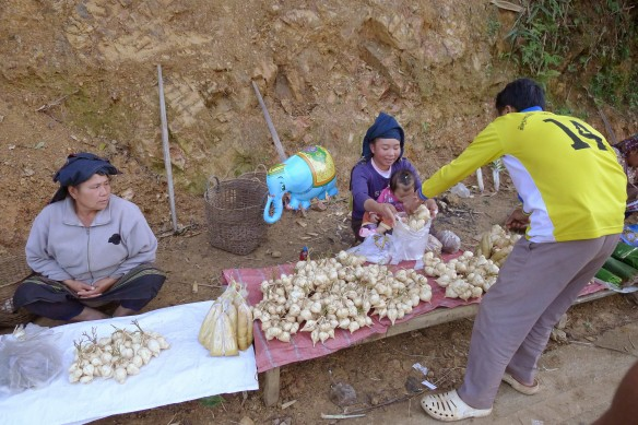 Women selling turnip-like vegetables and bamboo shoots on the side of the road from Luang Prabang to Luang Nam Tha